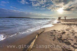 bois-flotte Sérignan plage