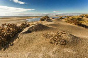 dunes à Sérignan plage